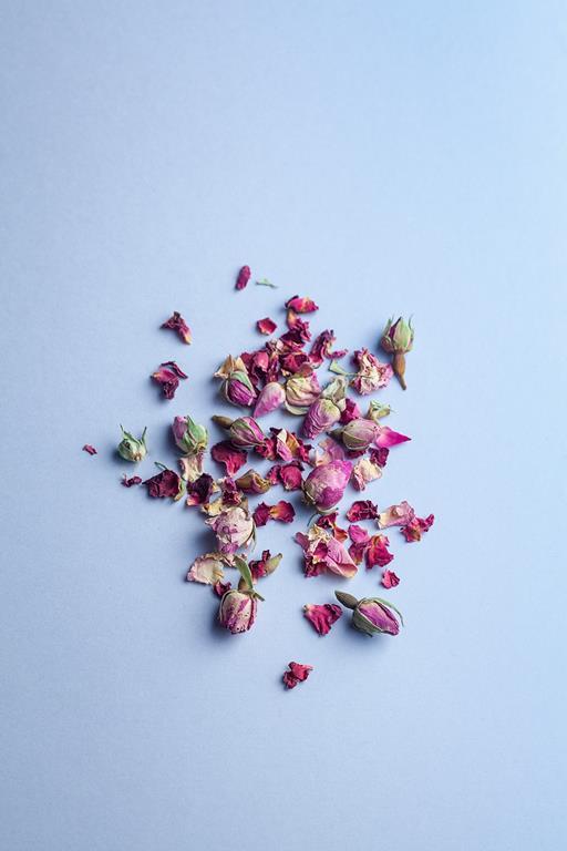 Obcięte kwiaty róży rozrzucone na blacie.