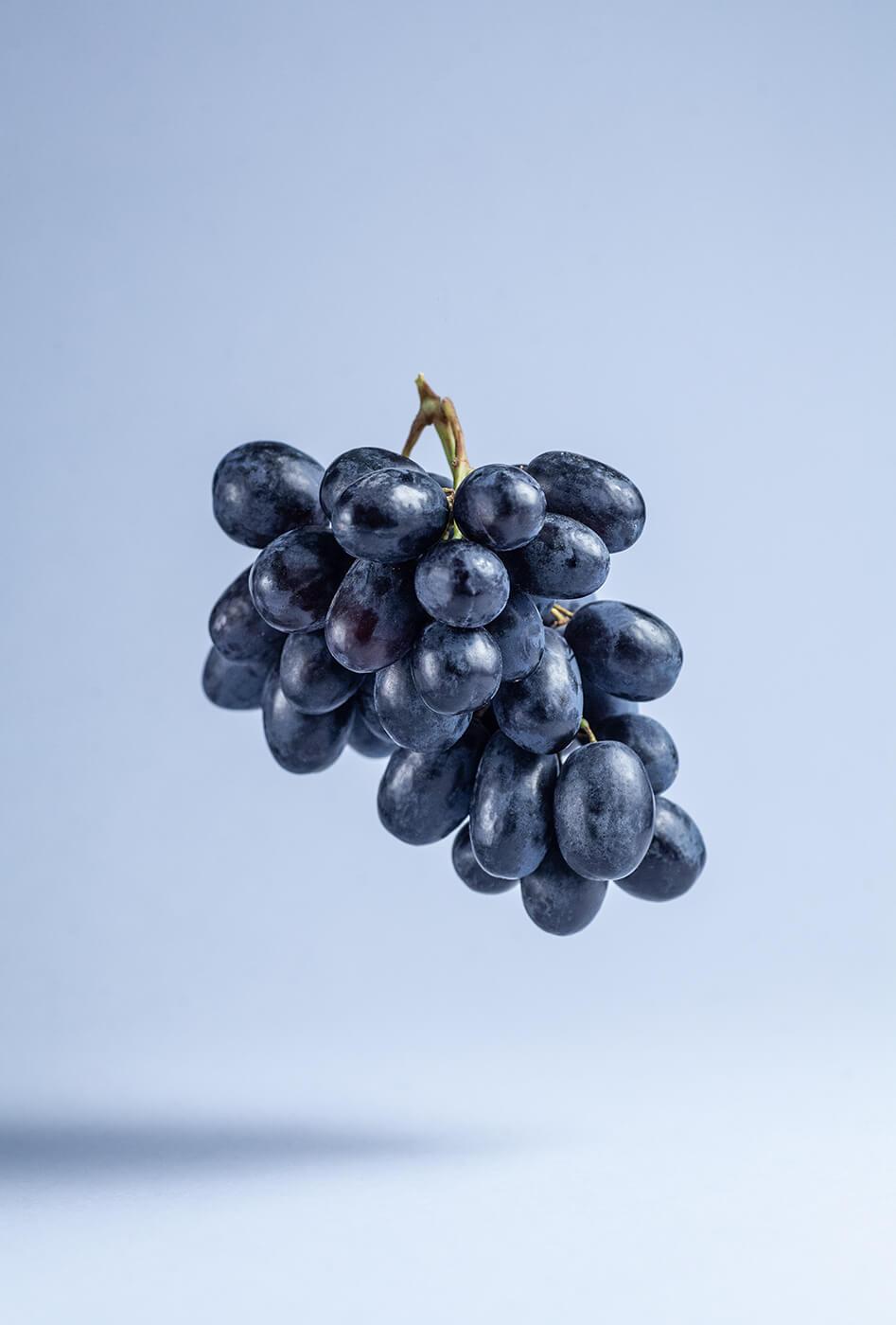 Kiść ciemnych winogron.