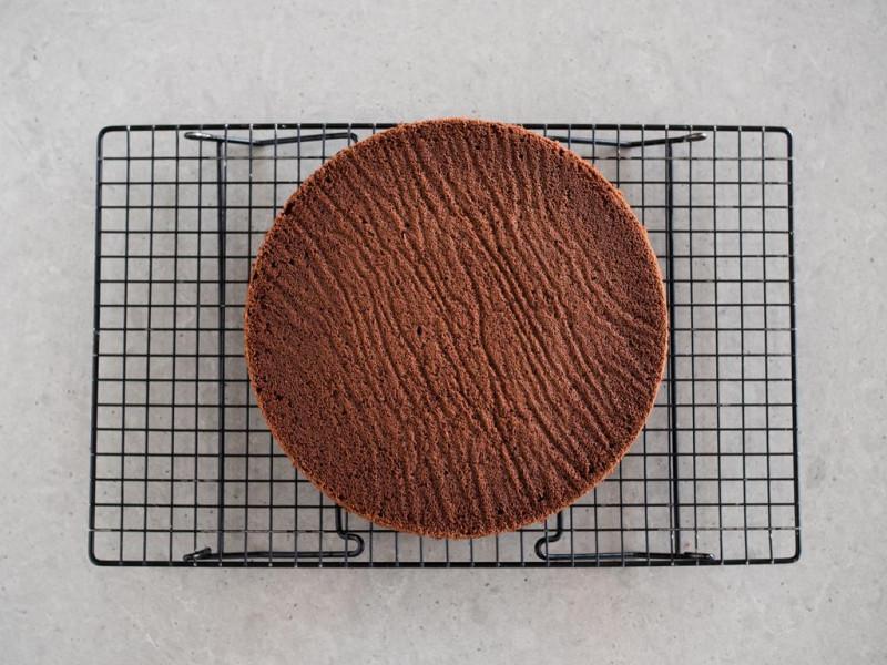 upieczony biszkopt czekoladowy